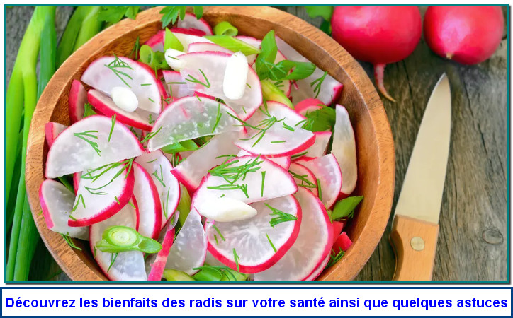 Le radis comporte divers antioxydants (vitamine C, provitamine A, sélénium, zinc…).