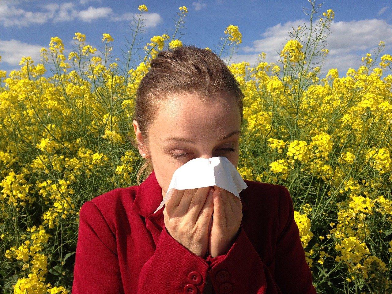 Qu'est-ce qu'une allergie? En jargon médical, on va parler d'«hypersensibilité».